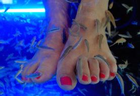 """Die Fußnägel einer Frau fielen nach einer """"Fischpediküre"""" ab"""