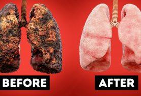 Ich habe aufgehört zu rauchen und zu trinken, und so hat es mein Leben verändert