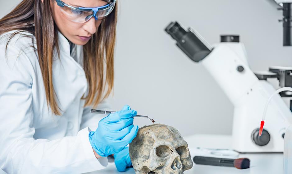 Ein Blick auf die forensische Zahnheilkunde und wie Zähne zur Identifizierung einer Person verwendet werden