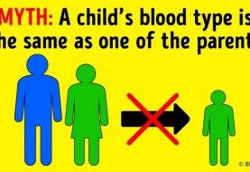 5 wichtige Gründe, warum Sie die Blutgruppen Ihrer Familienmitglieder kennen sollten
