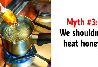 10Trendy Myths About Food That Are Not Quite True
