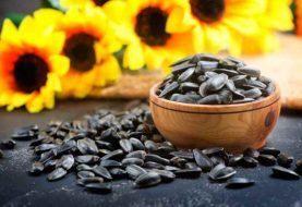 Was Sonnenblumenkerne Ihrer Haut antun